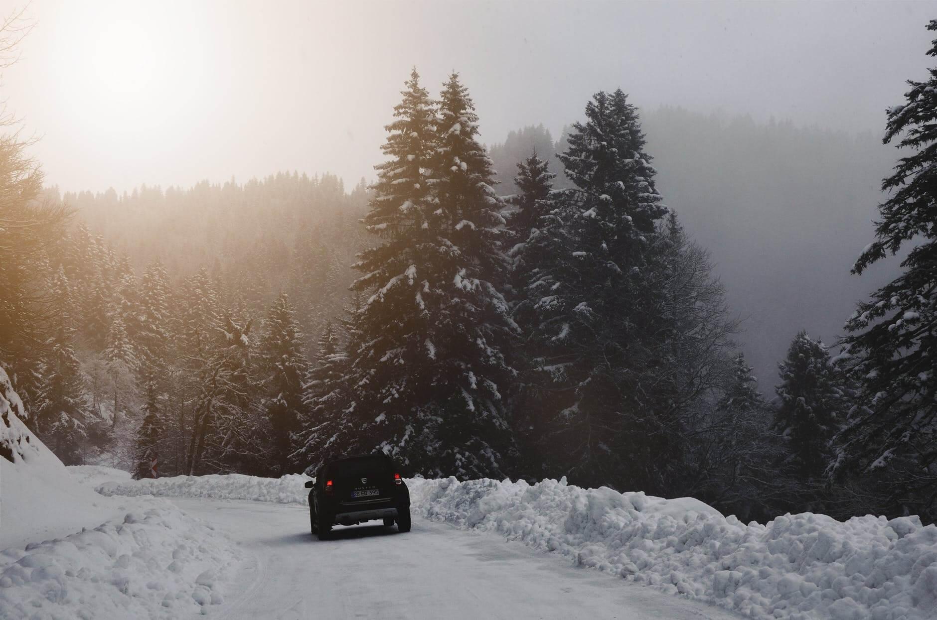 GoGoGo Driving at Christmas (1)